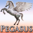 New Website for Pegasus Pool and Spa